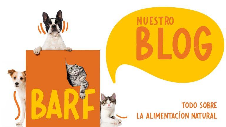 noticias sobre alimentacion barf para perros y gatos